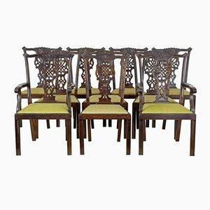 Set de Chaises de Salle à Manger Chippendale Antique en Bouleau, Suède