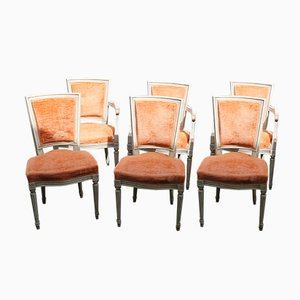 Vintage Louis XVI Style Set with 4 Dining Chairs & 2 Carver Chairs