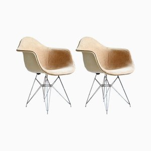 DAR Chairs by Charles & Ray Eames for Zenith Plastic Company, 1950s, Set of 2