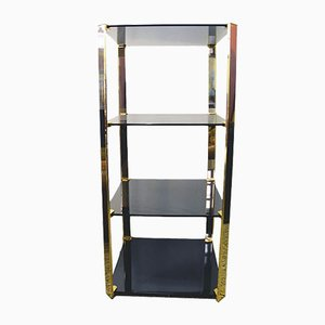 Tempered Crystal & Brass Shelving Unit from Gallotti & Radice, 1970s