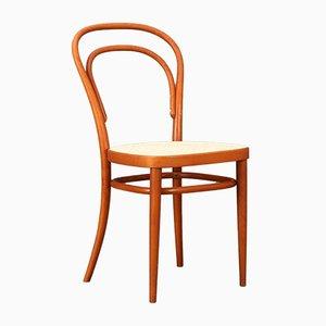 Modell 214 Stuhl aus Bugholz von Thonet, 1979