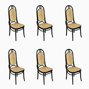 Antike Modell 207R Stühle mit schwarzem Holzgestell & Sitz aus Schilfrohrgeflecht von Michael Thonet, 6er Set