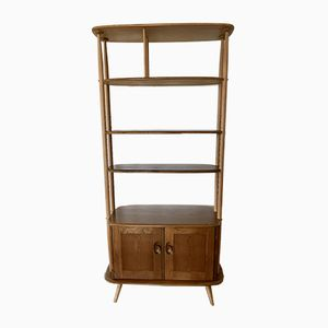 Vintage Giraffe Bookcase Room Divider by Lucian Ercolani for Ercol