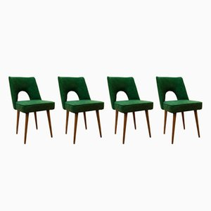 Shell Dining Chairs from Bydgoszcz Furniture Factory, 1960s, Set of 4