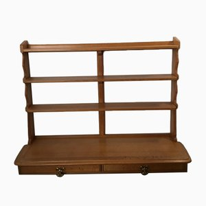 Vintage Oak Shelving Unit by Guillerme et Chambron