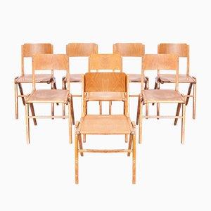 Vintage Esszimmerstühle von Casala, 1950er, 8er Set