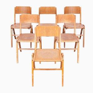 Esszimmerstühle von Casala, 1950er, 6er Set