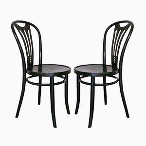 Chaises de Salle à Manger Art Nouveau Noires de ZPM Radomsko, 1960s, Set de 2