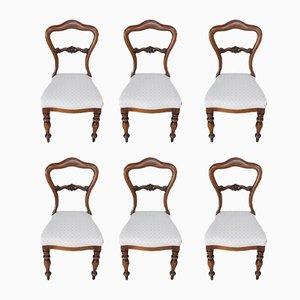 Antike Esszimmerstühle aus Palisander, 6er Set