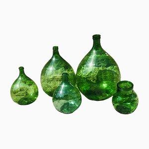 Grüne Vintage Korbflaschen, 5er Set