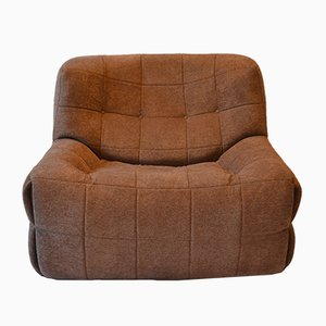 Vintage French Armchair by Michel Ducaroy for Ligne Roset, 1970s