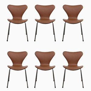 Series 7 Butterfly Esszimmerstühle von Arne Jacobsen für Fritz Hansen, 2000er, 6er Set