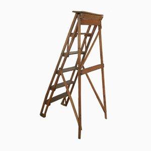 Vintage Italian Beech Ladder