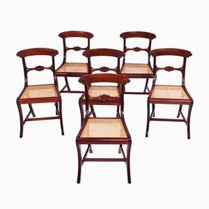 Antike Esszimmerstühle im antiken Stil, 1950er, 6er Set
