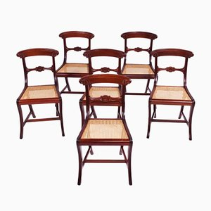 Antique Style Dining Chairs, 1950s, Set of 6