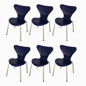 Sedie della serie 7 di Arne Jacobsen per Fritz Hansen, 2001, set di 6