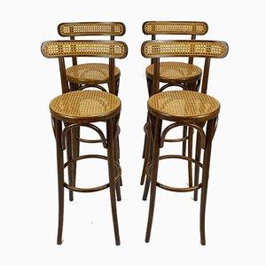 Tabourets de Bar Mid-Century en Jonc et Bouleau de Thonet, 1950s, Set de 4