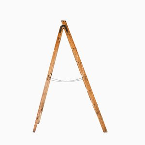 Mid-Century German Ladder, 1960s