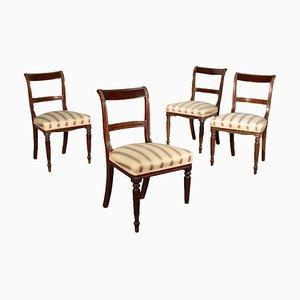 Englische Stühle aus Mahagoni, 19. Jh., 4er Set