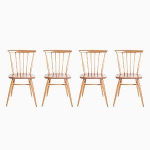 Chaises Vintage par Lucian Ercolani pour Ercol, Set de 4