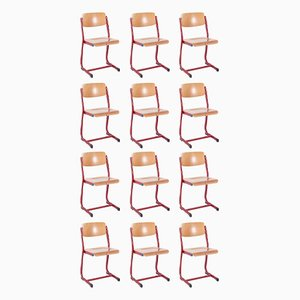 Vintage School Chairs, 1950s, Set of 12