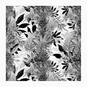 Schwarze Kimolia Tapete von 17 Patterns