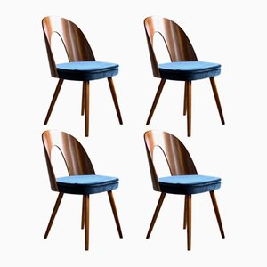 Mid-Century Dining Chairs by Antonin Šuman for Tatra, 1960s, Set of 4