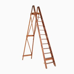 Large Dutch Pitch-Pine Ladder from de Krijger Amsterdam, 1930s