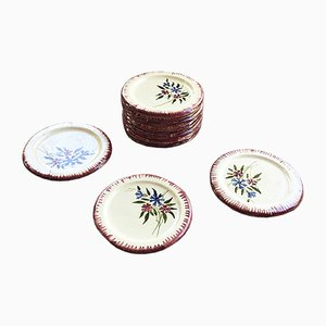 Antique Enameled Plates, Set of 12