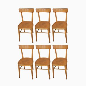 Italian Beech Chairs, 1950s, Set of 6