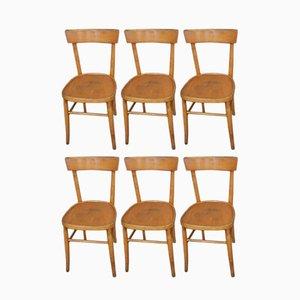Italienische Stühle aus Buche, 1950er, 6er Set