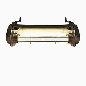 Industrial Neon Ceiling Lamp from Schreder, 1960s