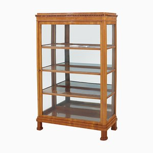 19th Century Biedermeier Display Case