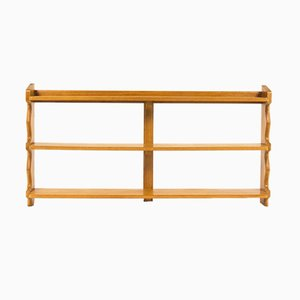 Vintage Shelving Unit by Guillerme e Chambron for Votre Maison, 1950s