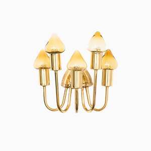 Model V-354/5 Brass Wall Lamp by Hans-Agne Jakobsson, 1960s