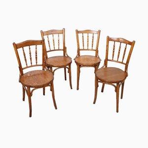 Sedie antiche in faggio, fine XIX secolo, set di 4