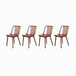Dining Chairs by Antonin Šuman for TON, 1960s, Set of 4
