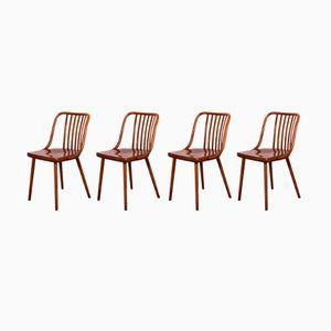 Esszimmerstühle von Antonin Šuman für TON, 1960er, 4er Set