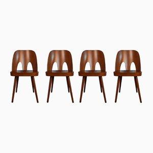 Stühle aus Buche von Oswald Haerdtl für TON, 1950er, 4er Set