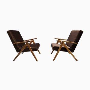 Mid-Century Modern Brown Velvet Easy Chair from Zakłady Mebli Giętych Radomsko, 1960s