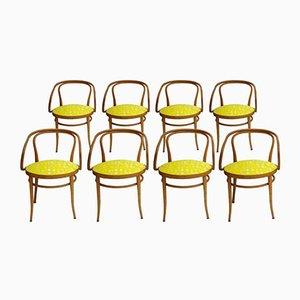 Stühle von Michael Thonet für Arflex, 1900, 8er Set