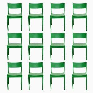 Grüne Mid-Century Esszimmerstühle aus Buche, 1950er, 6er Set