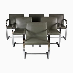 Brno Chairs by Mies van der Rohe for Knoll Inc., 1960s, Set of 6