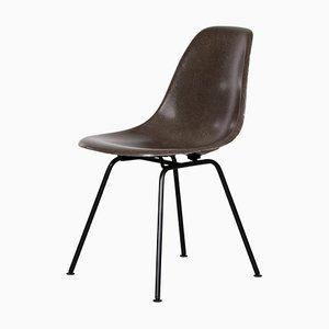 Silla DSX marrón de Charles & Ray Eames para Herman Miller, años 70