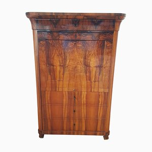 Antique German Walnut Single Door Cabinet