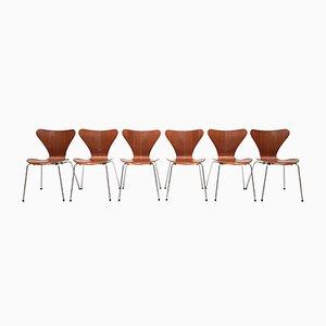 Sillas modelo 3107 de Arne Jacobsen, 1965. Juego de 4