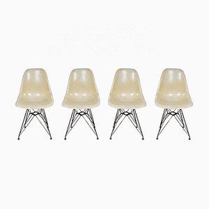 Beistellstühle mit Eiffel Gestell von Charles & Ray Eames für Herman Miller, 1970er, 4er Set