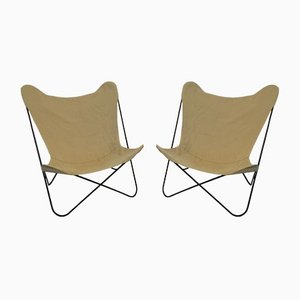 Italian Tripolina Chairs by Gastone Rinaldi for Rima, 1952, Set of 2