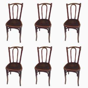 Chaises de Bistrot de Thonet, 1920s, Set de 6