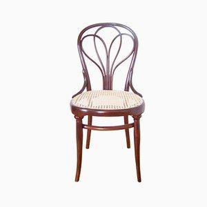 Antiker Nr. 25 Stuhl von Thonet, 1880er